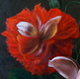 Мастер класс цветок